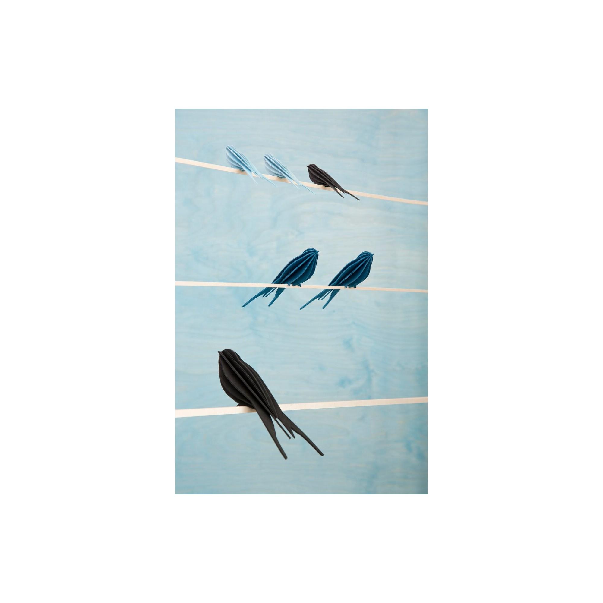 Decoration Carte Postale.Carte Postale Et Décoration Hirondelle Lovi